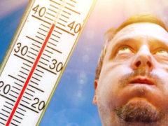 Советы и народные средства в помощь тем, кто плохо переносит жару