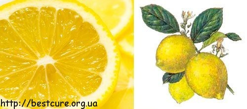 Лимон - отличное дополнение к чаю!