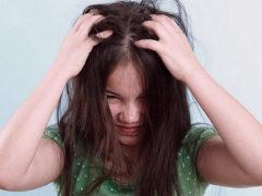 Головной педикулез у ребенка — способы заражения и народное лечение